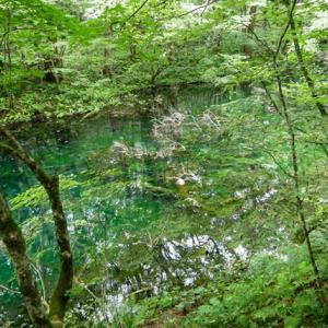 沸壺の池【青森県深浦町】