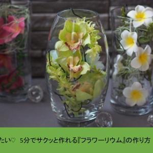 たった5分で完成!スタイリッシュな花の飾り方~フラワーリウム~の作り方をご紹介