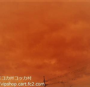 台風19号による発送の影響について ★不思議な空の色