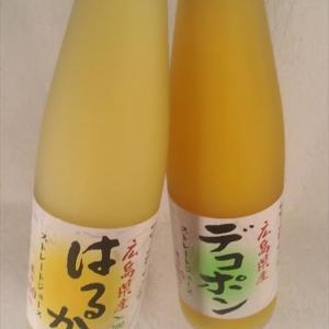 広島県のお土産 甘くて爽やかシャリシャリにしたよ~