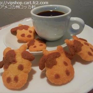 雪化粧したお庭 ★手作り干支クッキー
