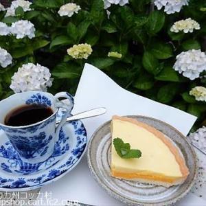 庭花 紫陽花満開 ★夏に爽やかなレモンのお味