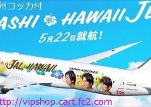 祝20周年 嵐様の特別塗装機 ★JAL  ARASHI HAWAII JET 運航中