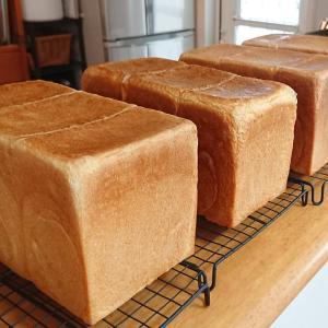 ✣【極上ミルク食パン】昨日より『食パンコースレッスン』が始まりました。基本からき...