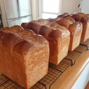 パン作りに知識もプラスして♪