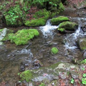 兵庫絶景旅6 猿壺の滝