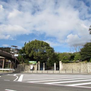 阪急・サンドウィットの旅2 バラの小径