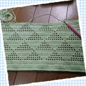 6月11日*今日のお弁当と届いた毛糸とダイソーの毛糸。