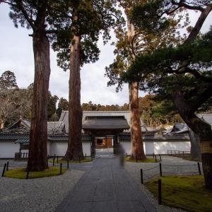 瑞巌寺 ②本堂周辺