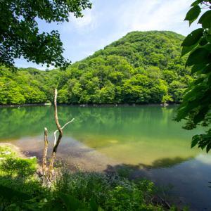 十二湖 ①鶏頭場の池