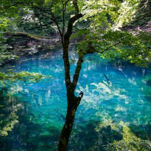 十二湖 ③沸壷の池