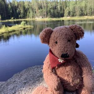 070 湖と焚き火とシナモンロール・ヌークシオ国立公園(かもめ食堂ツアーその5)〜2019ヘルシンキ+α