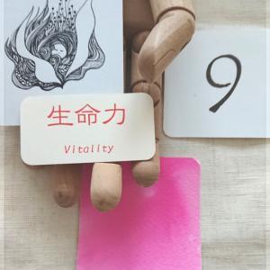 今日のHoNoチャンネル~「桜色」「生命力」
