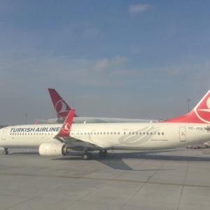 トルコ航空、6月9日まで運行停止を延期