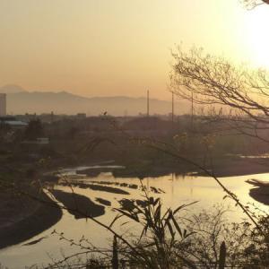 多摩川台公園 点描