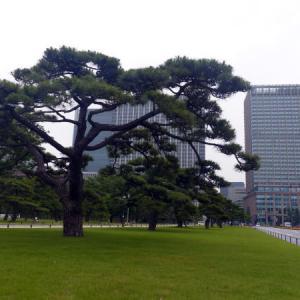 皇居外苑 楠木正成像 点描