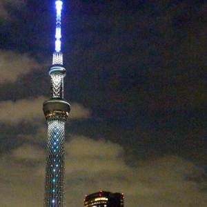 Pale Blue ~東京スカイツリー ライトアップ 点描~
