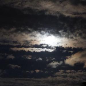 月に叢雲 ~綱島 点描~