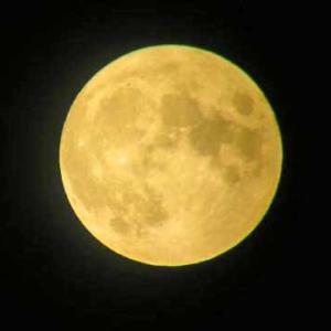 ほぼほぼ満月