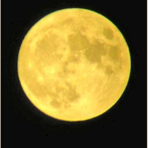 中秋節の月