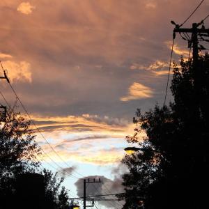 朱鷺色の空