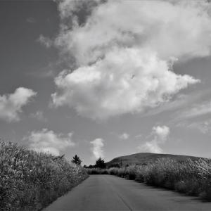 銀色草原、霧ヶ峰