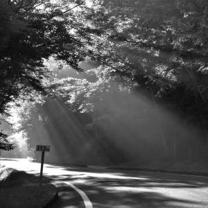 光の道、富士山