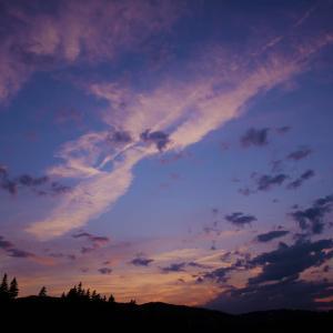 雲と花×Rene Char
