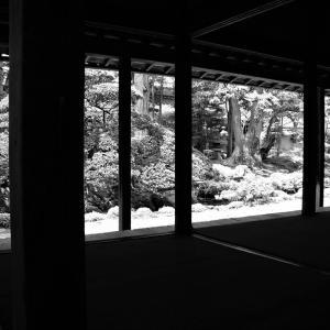 回廊の光陰、窓