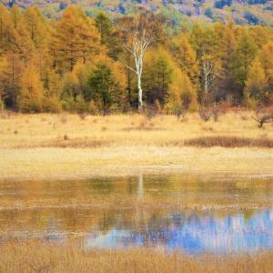 貴婦人の水鏡、奥日光幻の湖