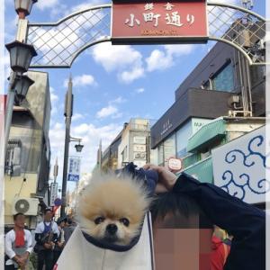 モモ川崎へ行く~鎌倉~