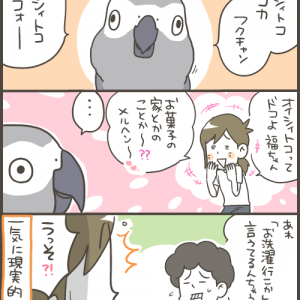飼い主が聞き間違えていた愛鳥のおしゃべり
