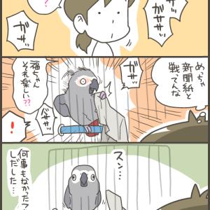 誤魔化すヨウム