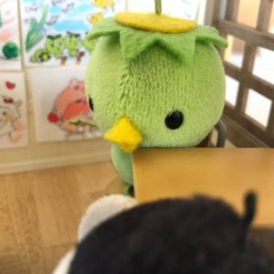 ツルル組の、『き』になる『かいぎ』〜〜!