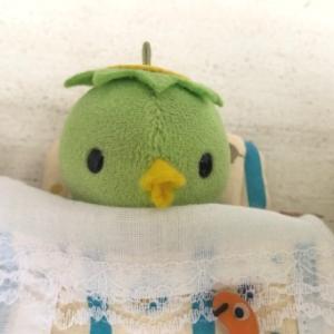カッパのコタロウの、『ねむれる』『おはなし』??