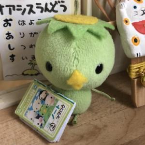 カッパのコタロウと、『つぎ』の『じゅぎょう』は〜!