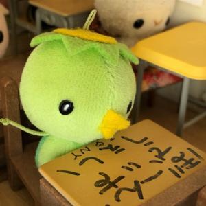 ツルル組の、せっきがえ~~~!!!