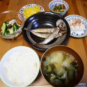 お魚を食べよう