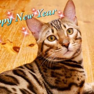 今年は誰が新年のあいさつ?☆
