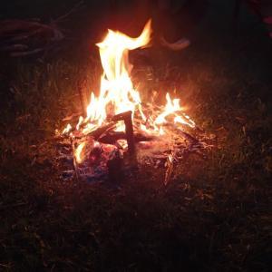 森の中の焚火みたいなコーチングタイム