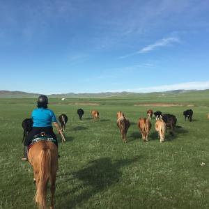 モンゴル国COVID19関連情報 ロシアからの避難帰国者から2桁感染者発覚