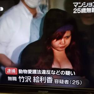 【画像】猫虐待で逮捕された女(25)のご尊顔wwwwwwwwwwwwwwww