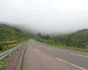 北海道花の旅 5 羅臼湖ハイキング