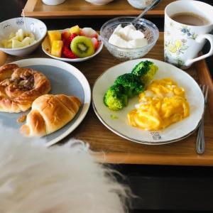 今日もいつもの朝食ワンコと一緒