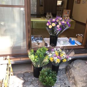 土曜日お花の出張販売「スタジオはなとき」さん♪
