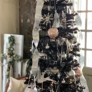 クリスマスツリーを出しました♪~2019~