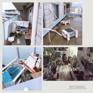 マンションの台風対策 今回もベランダガーデンを室内に避難