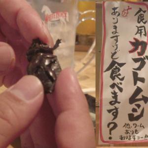 【居酒屋わやわや】食用のカブトムシとかゲンゴロウとか...リアルな盛り付けとか楽しい。