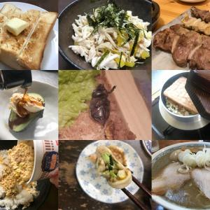 【5月食事まとめ】「行ったお店Best3」「自作料理Best3」&「食用カブトムシ」