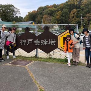 神戸養蜂場までハイキング